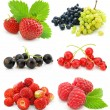 Collection of ripe berry fruits isolated — Stock Photo