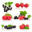 Set fresh berry fruits with green leaves — Stock Photo