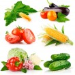 Set fresh vegetables with green leaves — Stock Photo #6619384