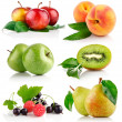 Stock Photo: Set fresh fruits with green leaves