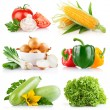 Set fresh vegetables with green leaf - Stock Photo
