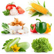Set fresh vegetables with green leaf — Stock Photo #6619766