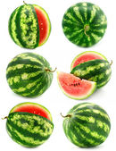 Collection of water melon fruits isolated — Stock Photo