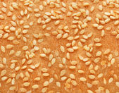 Texture of bread with sesame pips — Stock Photo