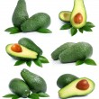 Set of green avocado fruits with leaf isolated on white - Zdjęcie stockowe