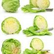 Collection of green cabbage vegetables isolated — Stock Photo #6621412