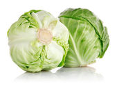 Fresh green cabbage fruit isolated — Stock Photo