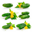 Stock Photo: Set cucumber fruits with leaves