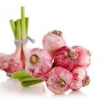 Fresh garlic fruits isolated — Stock Photo