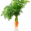 Fresh carrot fruits with green leaves — Stock Photo #6631074