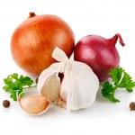 Fresh garlic fruits with green parsley — Stock Photo