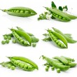 Set of fresh green pea in the pod isolated — Stock Photo #6631360
