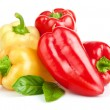 Fresh pepper vegetables - Foto Stock
