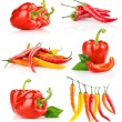 Set red pepper fruits with green leaf — Stock Photo #6631459