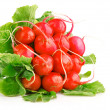 Stock Photo: Fresh red radish vegetables with green leaves