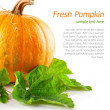 Yellow pumpkin vegetable with green leaves — Stock Photo #6632753