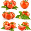 Set of red tomato vegetable with cut and green leaves - Stock Photo