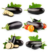Set eggplant vegetable fruits isolated on white — Stock Photo