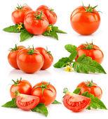 Satz von roten tomaten mit geschnitten und grünen blättern — Stockfoto