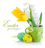 Spring flowers with easter eggs — Stock Photo