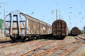 Freight wagons — Stock Photo