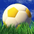 3D soccer ball in green grass — Foto de Stock