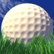 3d white golf ball in green grass — Stock Photo