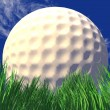Stock Photo: 3d white golf ball in green grass
