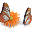 Flower and butterflys — Stock Photo