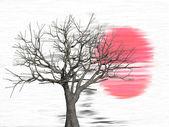 Tree at sunset — Stock Photo