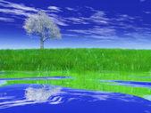 Campo verde con árboles — Foto de Stock