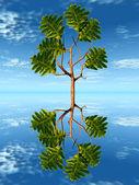 árbol del roble en el agua — Foto de Stock