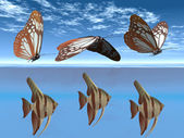 Butterflies and fish — Stock Photo