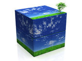 Cube and tree — Stock Photo