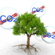 The tree and carbon dioxide — Stock Photo
