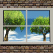 Trees and nature through the window — Stock Photo #6606233