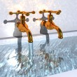 The taps of the bath - Stock Photo