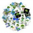 A bubble with pictures of trees — Stock Photo