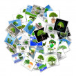 A bubble with pictures of trees — Stock Photo #6606790