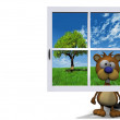 Beaver and window - Stock Photo