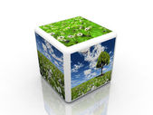The natur cube — Stock Photo