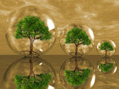 Trees in a bubbles — Stock Photo