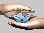 The butterfly — Stock Photo