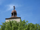 The church tower above the trees — Stock Photo