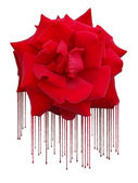 Rose in paint and sagging — Stock Photo