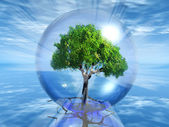 Tree in a transparent bubble — Stock Photo