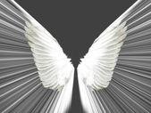 Vleugels — Stockfoto