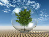 Tree in a bubble — Stock Photo