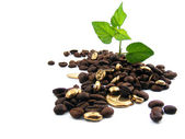 Roasted coffee beans with gold..... — Stock Photo