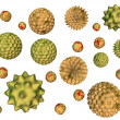 Stock Photo: Pollen isolated